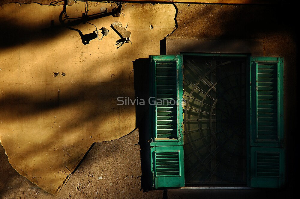 Old window in the setting sun by Silvia Ganora
