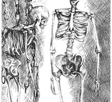 skeleton in chains by Vanessa DeWig