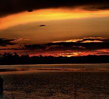 Sunset by Ricky Wilson
