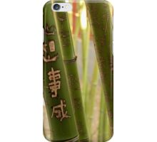 Bamboo Carvings - 1 ©  iPhone Case/Skin