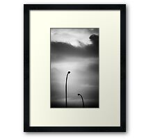 seeking absolution Framed Print