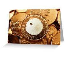 Worlds Smallest Sand Dollar (1180) Greeting Card