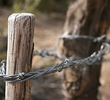 Fence Post by KDPhotos