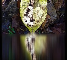 The Reflection of the Leaf by arteology