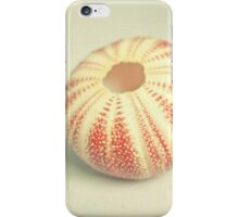 Sea Urchin iPhone Case/Skin