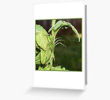 LEGGY MONSTER Greeting Card