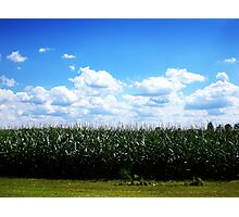 """""""Wide open spaces..."""" Photographic Print"""