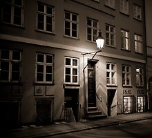 Streets of Denmark by Sean Weidemann