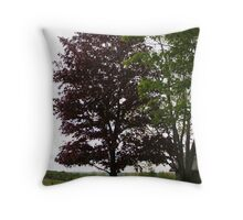 REDREAMING WINTERPINK REVISITED IN SPRING Throw Pillow
