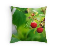 Summer Berries Throw Pillow