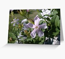 Beauty Among Death Greeting Card