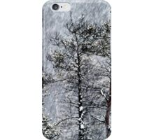 23.1.2015: Pine Trees in Blizzard III iPhone Case/Skin