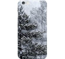 23.1.2015: Pine Trees in Blizzard IV iPhone Case/Skin