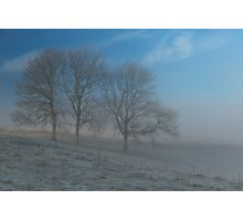 Trees, mist and blue sky Photographic Print