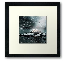 The Ice Maiden Framed Print