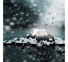 The Ice Maiden Photographic Print