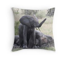 Elephant mud bath Throw Pillow