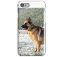 A German Sheperd in the frost iPhone Case/Skin