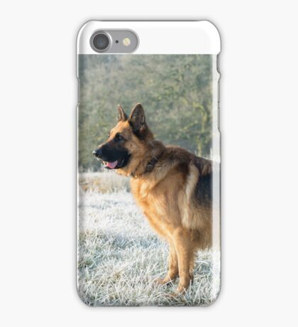 A German Sheperd in the frost iPhone Case/Skin