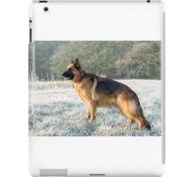 A German Sheperd in the frost iPad Case/Skin