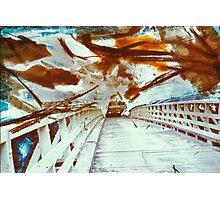 Bushfire Zone Photographic Print