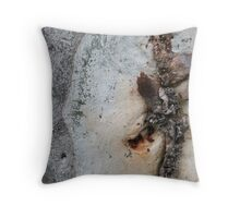 Judo attack? Throw Pillow