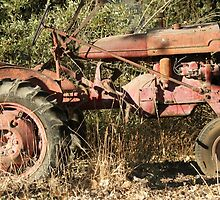 Welcome to the farm; Atascadero, CA USA by leih2008