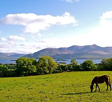 County Kerry by Alex Cassels