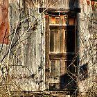 Doorway to the Past by BBatten