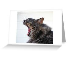 Frankie Froo Froo Yawn Greeting Card