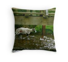 Looking Down and Out Throw Pillow