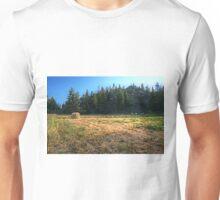 Glacier National Park Lake, Mountains, Hay Unisex T-Shirt