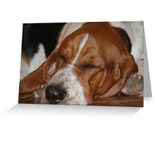 Shango sleeping Greeting Card