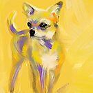 Chihuahua Josh by Go van Kampen