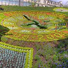 Floral Clock by Tom Gomez