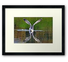 Above and Below.......... Framed Print
