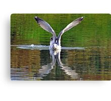 Above and Below.......... Canvas Print