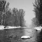 Big Wood River in Winter by Bass Sears