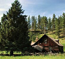 Cabin In The Woods by WILDBRIMOWILDMAN