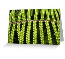 string of beads Greeting Card