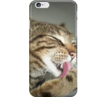 clean as a whistle iPhone Case/Skin