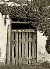 The Old Barn Door - Oakbank by LeeoPhotography
