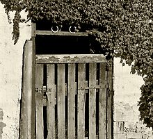 The Old Barn Door - Oakbank by LeeoPhotography