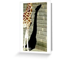 Caught in the Shadow Greeting Card