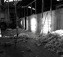 In the Shearing Shed by Lisa Evans