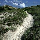 A Sandy Stairway to Heaven  by Nikki Trexel