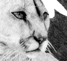 Canadian Cougar Sticker