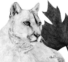 Canadian Cougar by createdtocreate
