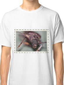 Over night Visitor Classic T-Shirt