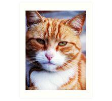 Mr Grumpy Art Print